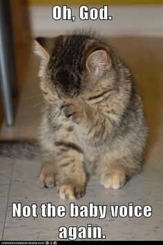 Sorry, cutie-pie sweet-pea sugar-dumpling wumpling... I mean, Cat.