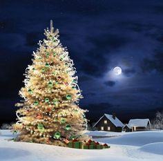 Moonlit Christmas