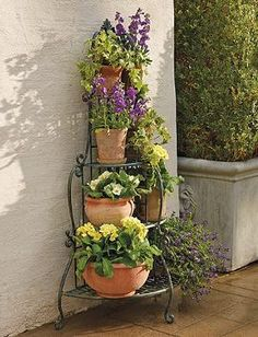 Bring the beauty of Italy to your outdoor space with the Florentine Lattice Etagere; an intricate design that proudly displays your favorite foliage.