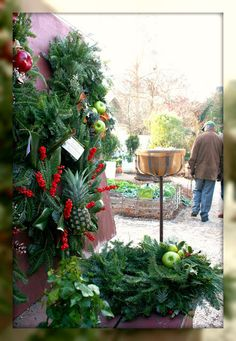 Christmas In The Colonial Garden