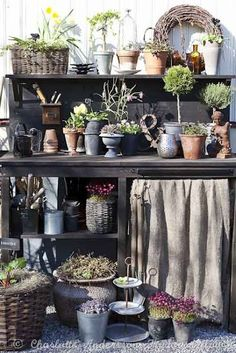 pot tabl, cottage chic, potted plants, outdoor flowers, pot bench, potting tables, potting benches, burlap curtains, garden