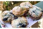 BLUEBERRY MUFFINS: Everyone loves blueberry muffins for breakfast  #blueberry #muffin #breakfast