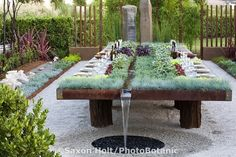 """""""Future Feast in The Garden of Flow/Accumulation"""" by Suzanne Biaggi and Patrick Picard at The Late Show Gardens, Cornerstone, Sonoma, CA.  Copyright:  © Saxon Holt/PhotoBotanic.415-898-8880"""
