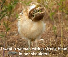 """""""I want a woman with a strong head in her shoulders."""""""