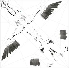 takayuki hori: oritsunagumono // diagram of the printed components #xray #plastic #unfold #diagram