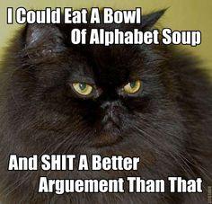 bowl, remember this, funny sayings, funni, kitty humor, languag, alphabet soup, funny kitties, grumpy cats