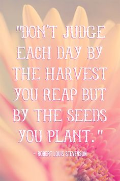 The seeds you plant... #inspirational #quotes