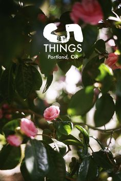 5 Things: A Travel G
