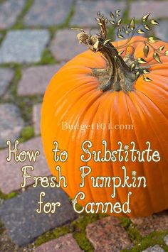 We're going to be sharing a slew of Yummy Pumpkin recipes, but before we do, here's a great post on how to Substitute FRESH pumpkin for Canned in your favorite recipes!
