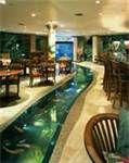 Fish Tank Floor -