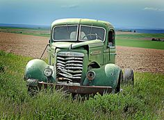 vintag green, field vintag, sport cars, field of dreams, green cars, dream car, old cars, vintage green, green truck