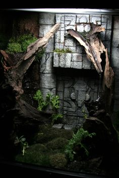 Vivarium for Crested Geckos 2 - Construction Journal can be found here:  http://blairstuff.com/about/crested-gecko-tank/