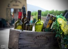 Savor some vino in #Tuscany with VBT. #Wine #Italy