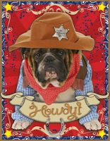 Themes For Classrooms: There's a New Sheriff in Town!
