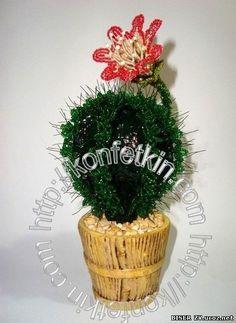 Бисероплетения кактус