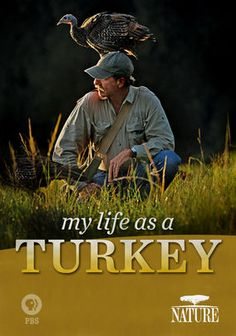 "Nature: My Life as a Turkey- A fantastic family film about a naturalist who became a ""mother"" to 16 wild turkeys and cares for them for eighteen months. A perfect family film that your kids will love! (On Netflix)"