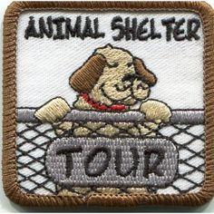 animal shelters, anim shelter