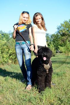 http://www.black-russian-terrier-dog-breed-store.com/store/ #black #russian #terrier #girl #photography #dogs #animal #russian #terrier
