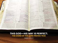 """""""This God–His way is perfect; The Word of the Lord proves true.""""  2 Samuel 22:31"""