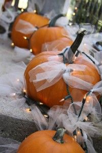 tulle and xmas light wrapped pumpkins - awesome at night!
