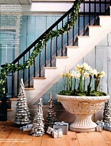 ... wall colors, christma decor, christma staircas, christmas garlands, christmas trees, flower, staircas decor, paperwhite christmas, christmas staircase
