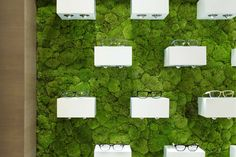 Moss covered wall display. Optik Ganz by Heikaus Krumbach 03 Optik Ganz by Heikaus, Krumbach   Germany