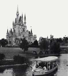 vintage disney world swan boats