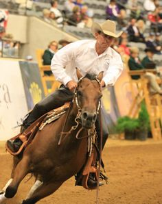 Spring Horse-Training Tip: Allow your horse to stretch his topline during warm-up. Check out America's Horse Daily for more horse-training tips. http://americashorsedaily.com/