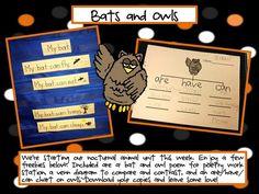 Cute for bat or owl unit!