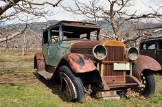 Old abandoned car by Perl Photography, via Flickr