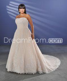 Spectacular A-line Strapless Floor-length Chapel Appliques Color Plus Size Wedding Dresses