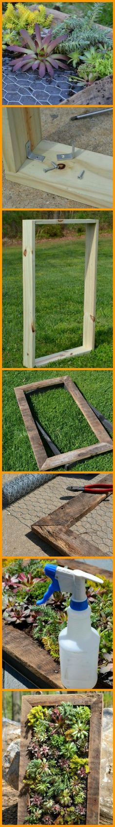 Yes it's a 'living picture' that requires minimal watering, and yes you can make one yourself. http://theownerbuildernetwork.co/g5gs