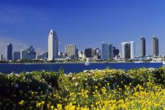San Diego, my favorite city in the US.  Would live here if it weren't so darn far away from everyone I know!