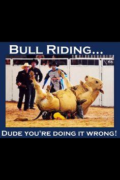 Bull Riding Cowboy.