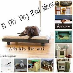 10 diy, anim, dogs, diy dog, puppy bed diy, pet, dog diy bed, dog beds, bed idea