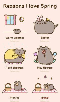 Reasons I Love Spring