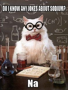 More Chemistry Cat! NA.