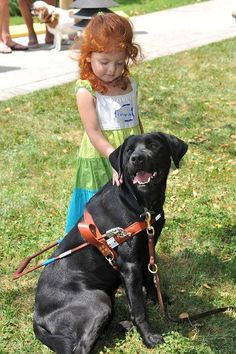 Guiding eyes for the blind. These amazing dogs make all the difference in a person's life who is without sight.  It gives them the opportunity to live a full life, relying on their sight companion, rather than being dependent on other people.  BRAVO!