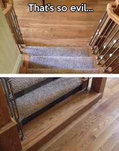 stair, prank, evil genius, floor, funny pictures, funni, carpet, hous, walk