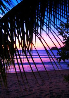 Sun sets in awesome colour over Coconut Island in the Yasawa group of islands in Fiji. (Source: Neil Collarbon) #fiji #sunset