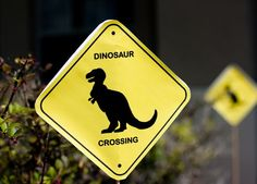 "Photo 5 of 14: Dinosaurs / Birthday ""Modern Dinosaur Birthday Adventure""   Catch My Party"