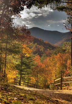 Autumn in Appalachia. This is the way God meant for the mountains to look, not flattened and carries away!
