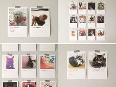 Bloggers Love Dogs + Bloggers Love Cats