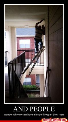 laugh, funny pictures, ladders, funni, funny images