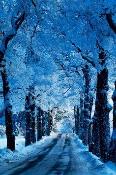 Blue Snow Road, Stockholm, Sweden photo via mrswilson