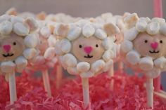 Easter Marshmallow Lamb Cake Pops
