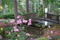 Norfolk Botanical Gardens, Norfolk VA