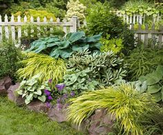Stone borders...creating a rockery effect for your borders