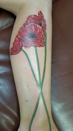 My beautiful poppies done by Shirley Escribano at Fallen Owl in...