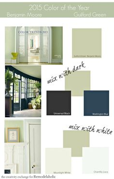 2015 Paint Color of